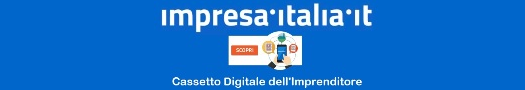 Visita https://impresa.italia.it/itlg/app/public/#/login