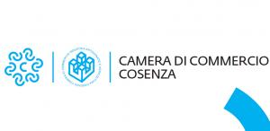 Logo Camera di Commercio di Cosenza